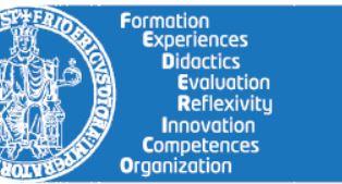Logo progetto Federico